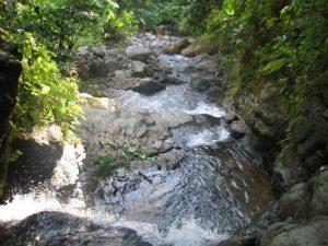 Rio River In Uvita Costa Rica