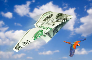 dollar+airplane+scarlet+macaw
