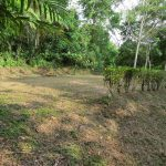 Uvita Costa Rica property for sale
