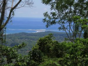 Whales Tail view property Uvita
