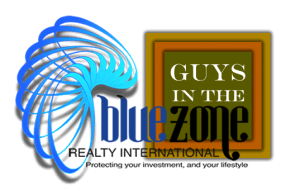Blue Zone and Guys in the Zone Logo
